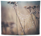 Winter's End Tapestry by Laura Evans