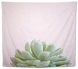 Desert Flora 1 Tapestry by Susannah Tucker