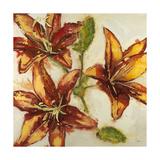 Floral Abstract *Exclusive* Giclee-tryk i høj kvalitet af Randy Hibberd