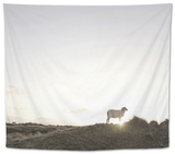 Sheep on Dune, the Sun, Back Light, List, Island Sylt, Schleswig Holstein, Germany Tapestry by Axel Schmies