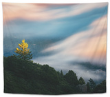 Dreamy Fog Light and Tree, Marin Mill Valley California Tapestry by Vincent James
