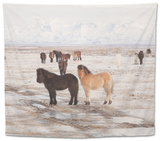 Iceland Horses, Near Hvollsvsllur, South Iceland, Iceland Tapestry by Rainer Mirau