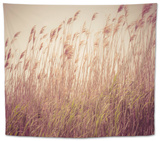 Beach Grass Waving in the Wind, Fire Island, New York, USA Tapestry by Julien McRoberts