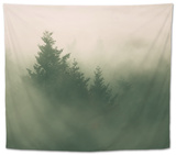 Foggy Green, Trees in Fog at Mount Tam, Bay Area, San Francisco Tapestry by Vincent James