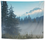 Misty Mount Hood Meadow in Spring, Oregon Wilderness Tapestry by Vincent James