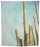 Desert Cactus With An Artistic Texture Overlay Tapestry by  pdb1