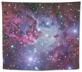 Fox Fur Nebula Tapestry by  Stocktrek Images