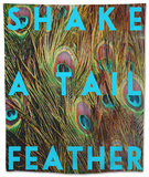 Shake a Tail Feather Tapestry by Keren Su