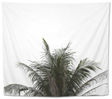 Leaves of Palm Tree on Isolated and White Background. Tapestry by  sky1991