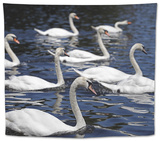 Swans Swim in the Serpentine in Hyde Park in London July 2016 Tapestry by  Donna