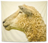 Sheeps Head Tapestry by Mark Gemmell