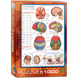 The Brain 1000 Piece Puzzle Jigsaw Puzzle