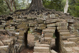 Tree Growing on Ruins of Ancient Spean Thmor Bridge, Siem Reap Photographic Print by David Wall