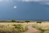 A Rainstorm Approaching in the Masai Mara Plains, Kenya Photographic Print by Sergio Pitamitz