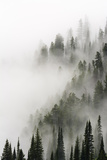 Cloud Forest, Glacier National Park, Montana Photographic Print by Russ Bishop