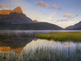 Mount Chephren and Waterfowl Lake, Banff National Park, Alberta, Canada Photographic Print by Tim Fitzharris