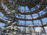 Look Out of Canopy Walkway of Visitor Center of National Park Bavarian Forest , Deep of Winter Photographic Print by Martin Zwick