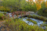 Utah, Wasatch Cache National Forest. Bridge over Stream Photographic Print by Jaynes Gallery