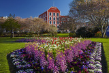 Spring Flowers and Historic Crown Mills Building, Dunedin, Otago, South Island, New Zealand Photographic Print by David Wall
