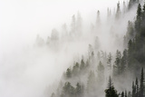 Cloud Forest, Glacier National Park, Montana, Usa Photographic Print by Russ Bishop