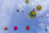 Mass Ascension at the Albuquerque Balloon Fiesta in Albuquerque, New Mexico, Usa Photographic Print by Chuck Haney