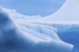 South Georgia Island. Iceberg Shapes and Hues Photographic Print by Jaynes Gallery