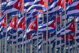 Cuba, Havana. Flags Wave in the Breeze Photographic Print by Brenda Tharp