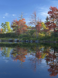 Northeast Creek Reflects the Autumn Foliage, Mount Desert Island, Maine Photographic Print by Tim Fitzharris