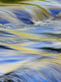 Flowing Water and Spring Colors Reflected on Stream, Tennessee Photographic Print by Adam Jones