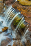 Colorful Cascade on Oberlin Creek in Glacier National Park, Montana, Usa Photographic Print by Chuck Haney