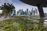 Singapore, City Skyline by the Marina Reservoir Photographic Print by Walter Bibikow