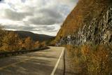Canada, Nova Scotia, Cape Breton, Cabot Trail in Golden Fall Color Photographic Print by Patrick J. Wall
