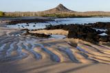Ecuador, Galapagos Islands, Santa Cruz, Cerro Dragon. Patterns in the Sand on the Beach Photographic Print by Ellen Goff