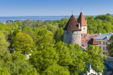 View of Tallinn from Toompea Hill, Old Town of Tallinn, Estonia, Baltic States Photographic Print by Nico Tondini