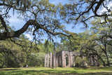 South Carolina, Beaufort County, Old Sheldon Church Photographic Print by Jim Engelbrecht
