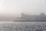 Washington State, Puget Sound. Ferry Emerges from Dense Fog Photographic Print by Trish Drury
