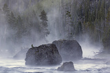Boulders in Early Morning Mist, Gibbon River, Yellowstone National Park, Wyoming Photographic Print by Adam Jones