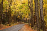 Smoky Mountains National Park, Drive Through the Smoky Mountains in the Fall Photographic Print by Joanne Wells