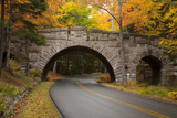 Maine, Acadia National Park, Carriage Road in Acadia National Park Photographic Print by Joanne Wells