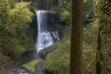 Oregon. Middle North Falls During Early Spring, Silver Falls State Park Photographic Print by Judith Zimmerman