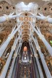 The Stunning Interior of the Sagrada Familia, Spain Reproduction photographique par Paul Dymond