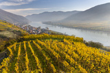The Village Spitz in the Wachau. Austria Stampa fotografica di Martin Zwick