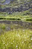 Alaska, Hatchers Pass, Old Mining Cabins Photographic Print by Savanah Stewart