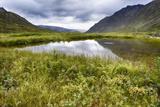 Alaska, Hatchers Pass Photographic Print by Savanah Stewart
