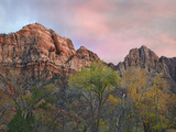 Zion Canyon, Zion National Park, Utah Photographic Print by Tim Fitzharris