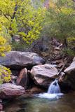 Utah, Kanarraville, Kanarra Creek Canyon Photographic Print by Jamie And Judy Wild