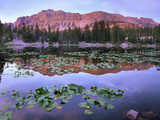 Hayden Peak Reflection into Butterfly Lake, Uinta Range, Utah Photographic Print by Tim Fitzharris