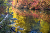 Deep Fall Colors, Wenatchee River, Stevens Pass Leavenworth, Washington State Photographic Print by William Perry