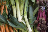 Canada, British Columbia, Cowichan Valley, Duncan. Leeks, Carrots and Beets at a Farmers Market Photographic Print by Kevin Oke