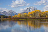 Wyoming, Grand Teton National Park, Autumn Color Along the Snake River Oxbow with Mt Photographic Print by Elizabeth Boehm